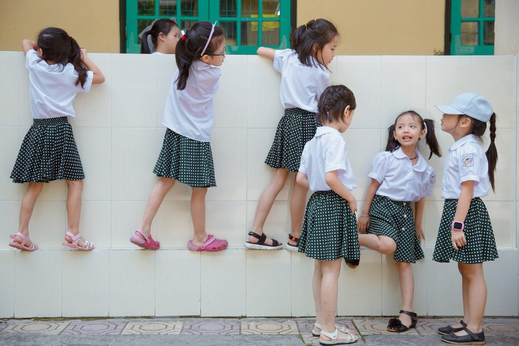 ベトナムの教育(一般的な学校教育)